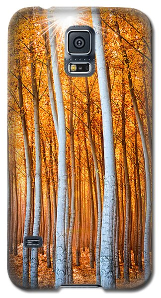 Galaxy S5 Case featuring the photograph Autumn Canopy Burst by Dan Mihai