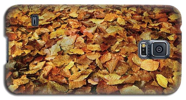 Autumn Carpet Galaxy S5 Case