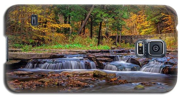 Autumn Cascades Galaxy S5 Case