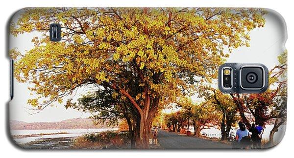 Autumn Causeway Galaxy S5 Case