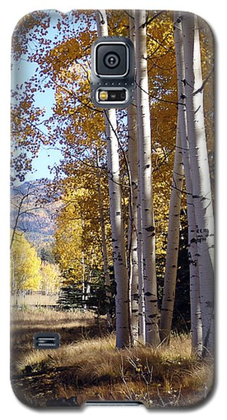 Autumn Chama New Mexico Galaxy S5 Case