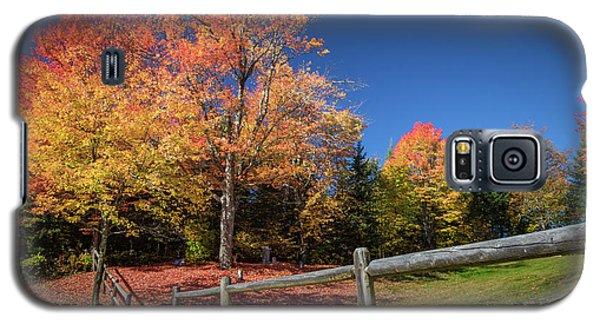 Autumn Color Galaxy S5 Case