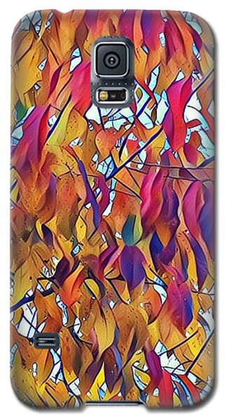 Autumn Color Galaxy S5 Case by Diane Miller