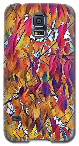 Galaxy S5 Case featuring the photograph Autumn Color by Diane Miller