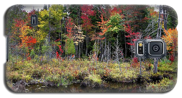 Galaxy S5 Case featuring the photograph Autumn Color In The Adirondacks by David Patterson