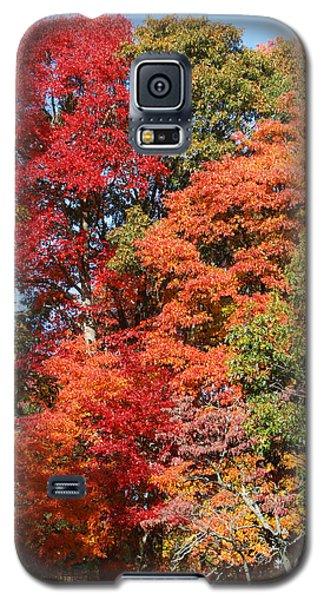 Autumn Color Spray Galaxy S5 Case