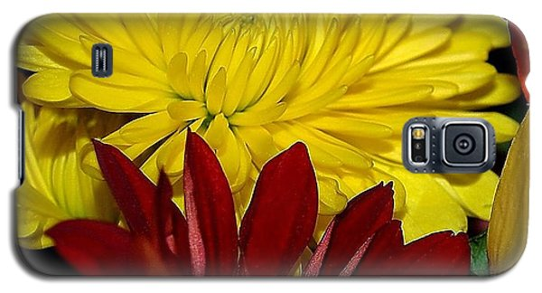 Galaxy S5 Case featuring the photograph Autumn Colors by Patricia Griffin Brett