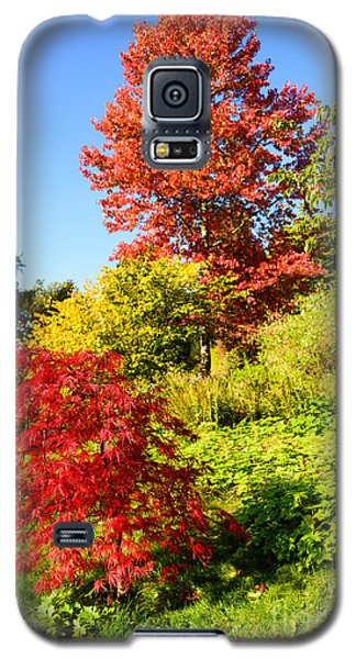 Autumn Colours Galaxy S5 Case