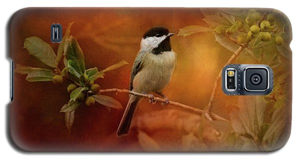 Autumn Day Chickadee Bird Art Galaxy S5 Case by Jai Johnson