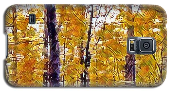 Autumn  Day In The Woods Galaxy S5 Case