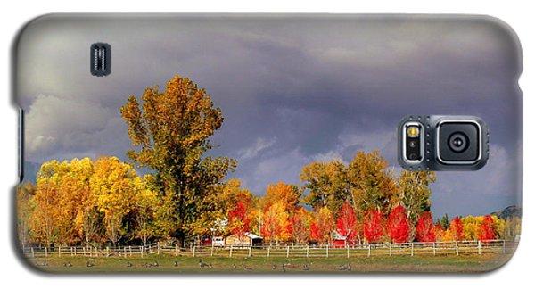 Galaxy S5 Case featuring the digital art Autumn Day by Irina Hays