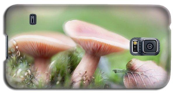Galaxy S5 Case featuring the photograph Autumn Dream by Dirk Ercken