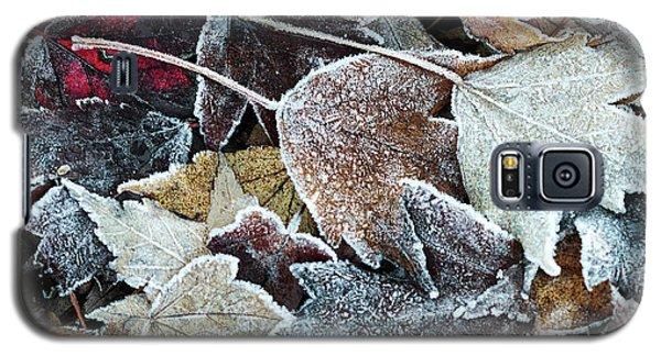 Autumn Ends, Winter Begins 1 Galaxy S5 Case