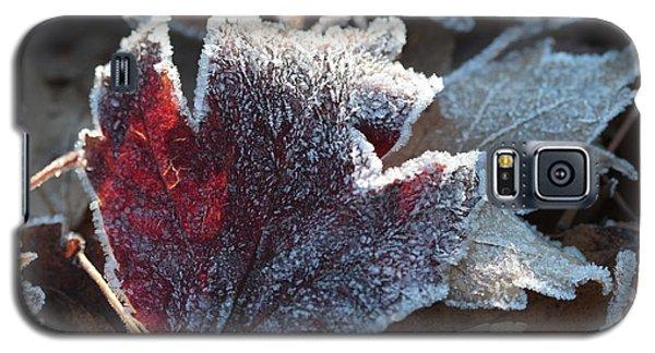 Autumn Ends, Winter Begins 2 Galaxy S5 Case