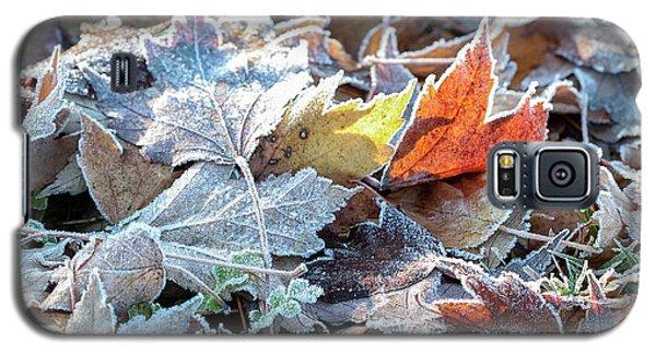 Autumn Ends, Winter Begins 3 Galaxy S5 Case