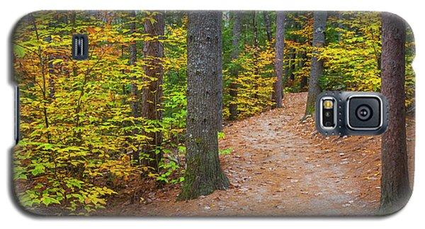 Autumn Fall Foliage In New England Galaxy S5 Case