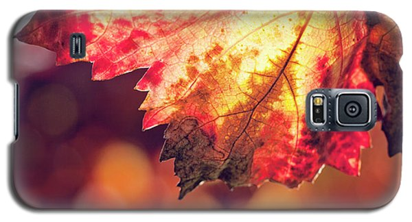 Galaxy S5 Case featuring the photograph Autumn Fire by Melanie Alexandra Price