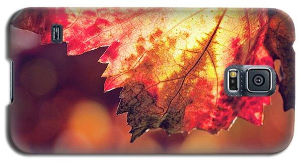 Autumn Fire Galaxy S5 Case by Melanie Alexandra Price