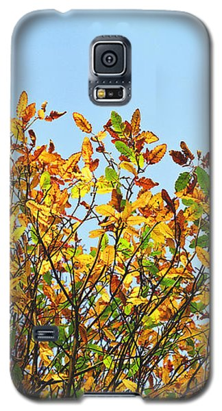 Autumn Flames - Original Galaxy S5 Case by Rebecca Harman