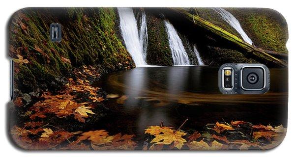 Autumn Flashback Galaxy S5 Case