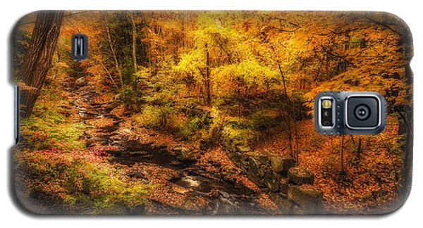 Galaxy S5 Case featuring the photograph Autumn Flow by Robert Clifford