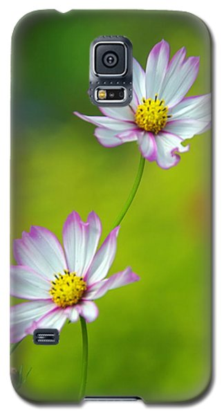 Galaxy S5 Case featuring the photograph Autumn Flowers by Byron Varvarigos