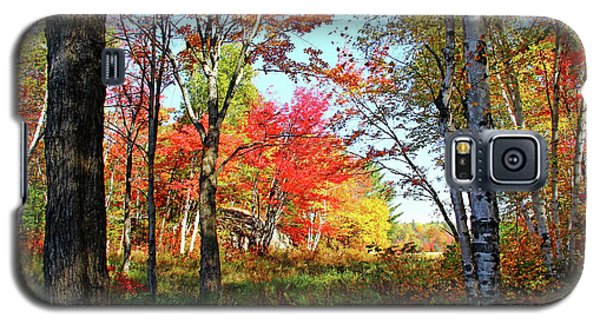 Galaxy S5 Case featuring the photograph Autumn Forest by Debbie Oppermann