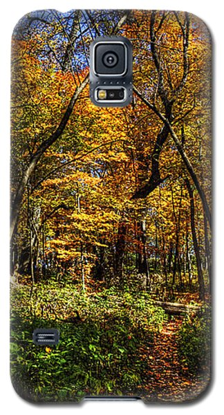Autumn Forest Path At Johnson's Mound Galaxy S5 Case
