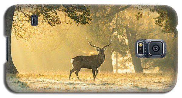 Galaxy S5 Case featuring the photograph Autumn Frost by Scott Carruthers