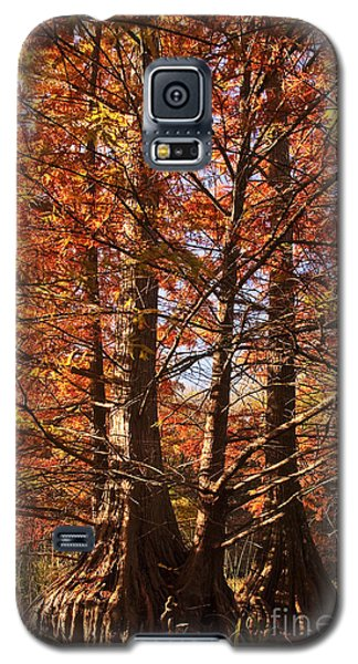 Galaxy S5 Case featuring the photograph Autumn Grandeur At Lake Murray by Tamyra Ayles