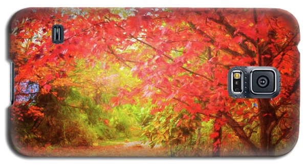 Glorious Foliage On The Rail Trail Galaxy S5 Case