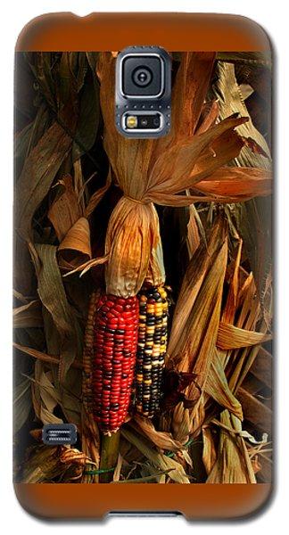 Autumn Harvest Galaxy S5 Case
