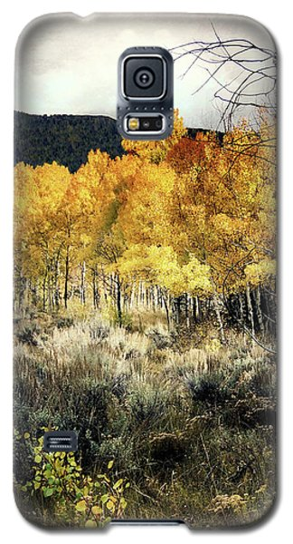 Galaxy S5 Case featuring the photograph Autumn Hike by Jim Hill