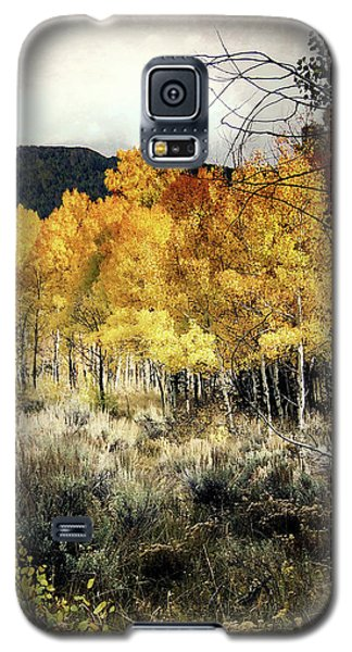 Autumn Hike Galaxy S5 Case by Jim Hill