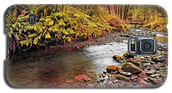 Autumn In An Oregon Rain Forest  Galaxy S5 Case