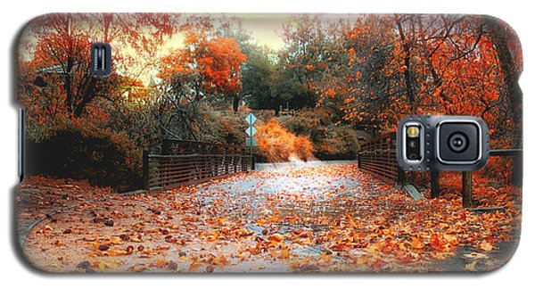Autumn In Discovery Lake Galaxy S5 Case