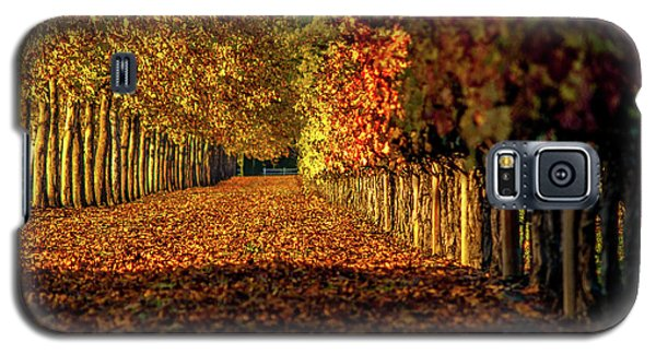 Galaxy S5 Case featuring the pyrography Autumn In Napa Valley by Bill Gallagher