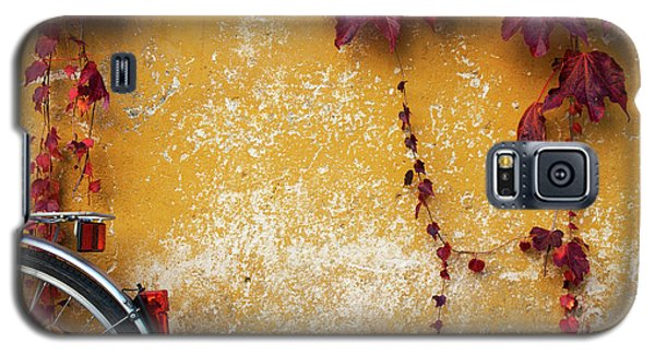 Galaxy S5 Case featuring the photograph Autumn In Red by Yuri Santin