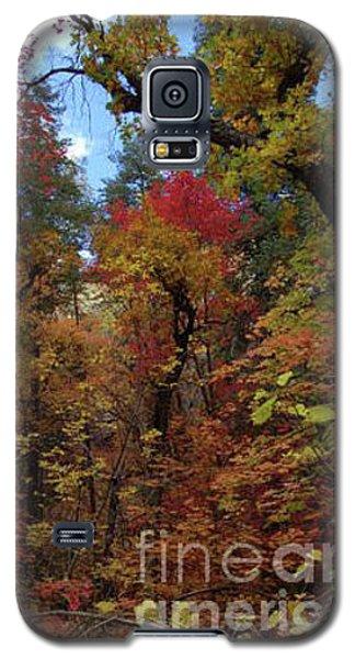 Autumn In Sedona Galaxy S5 Case
