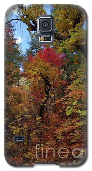 Autumn In Sedona Galaxy S5 Case