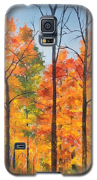 Autumn In South Wales Ny Galaxy S5 Case