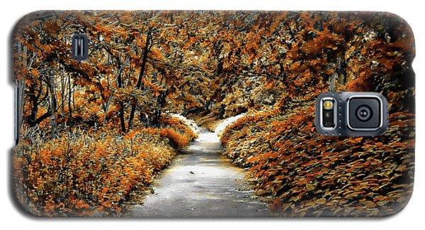 Autumn In Stamford Galaxy S5 Case