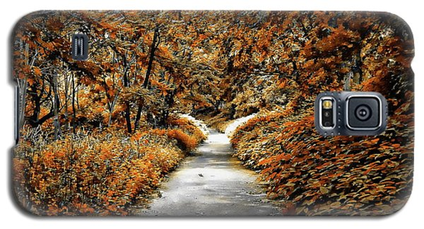 Autumn In Stamford Galaxy S5 Case