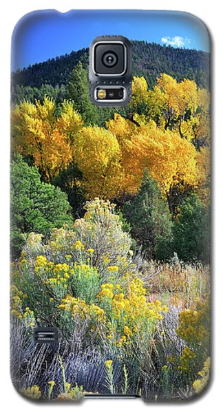 Autumn In The Canyon Galaxy S5 Case