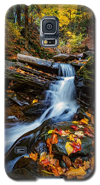 Autumn In The Catskills Galaxy S5 Case