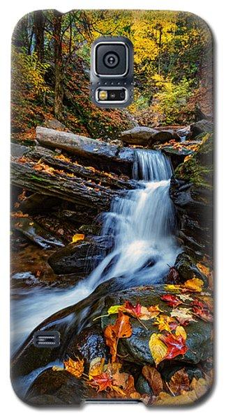 Autumn In The Catskills Galaxy S5 Case