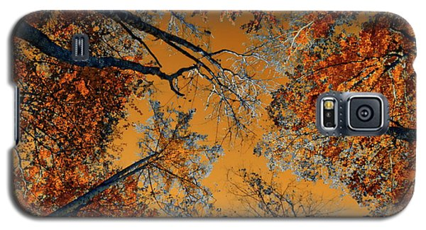 Autumn In The Forest Galaxy S5 Case