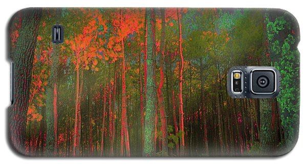 Galaxy S5 Case featuring the photograph Autumn In The Magic Forest by Mimulux patricia no No