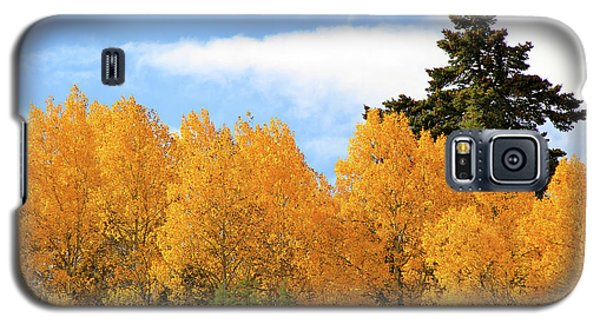 Autumn In The Owyhee Mountains Galaxy S5 Case