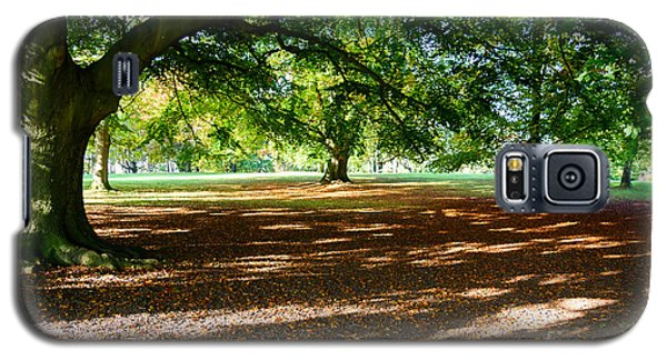 Autumn In The Park Galaxy S5 Case by Colin Rayner